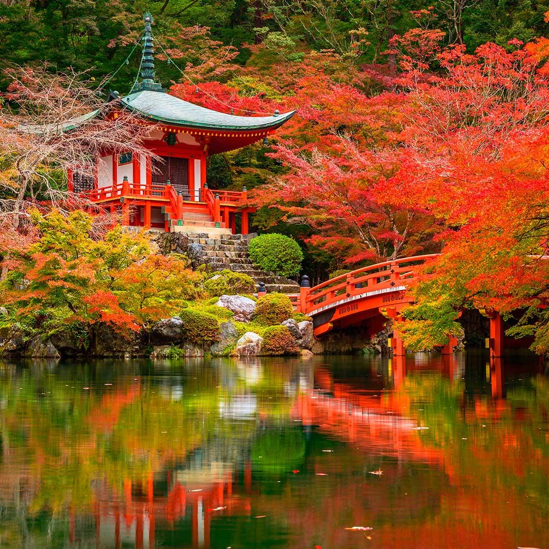 Qu ver en kioto jap n blog viajes el corte ingl s - Confiture de nefles du japon ...