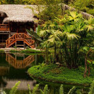 Amazonas en Brasil