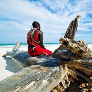 Costa keniata