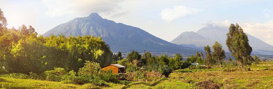 Parque de los Volcanes, Ruanda
