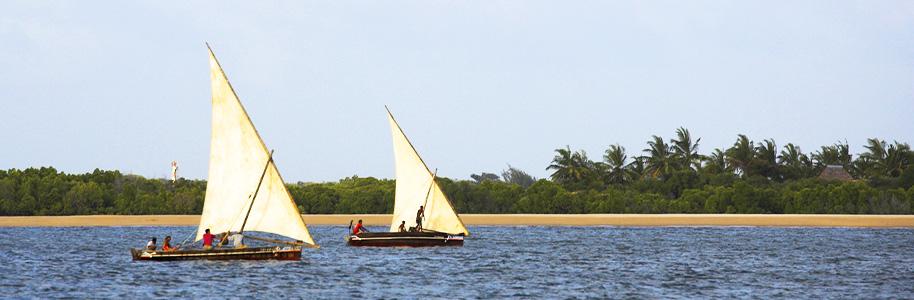 Dhows en Lamu
