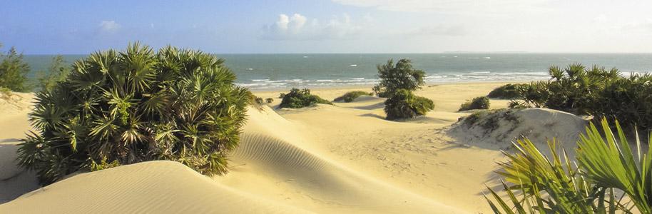 Playa Shela