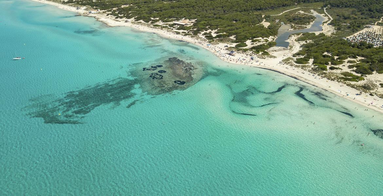 Mallorca Playa es Trenc