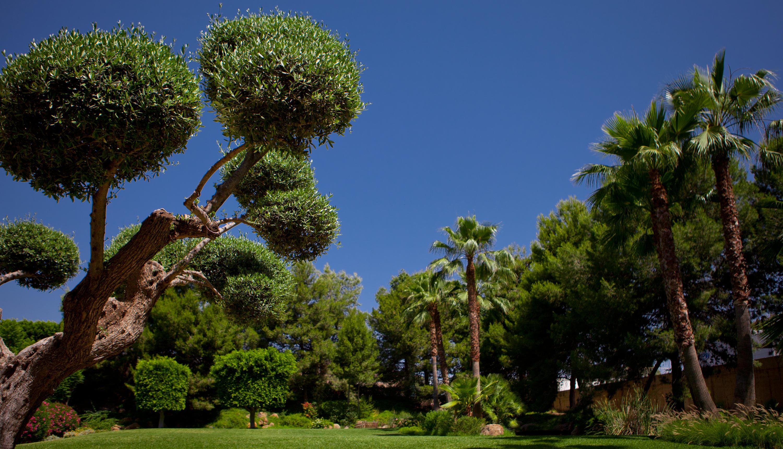 hotel jardines de amaltea hotel en lorca viajes el On jardines de lorca